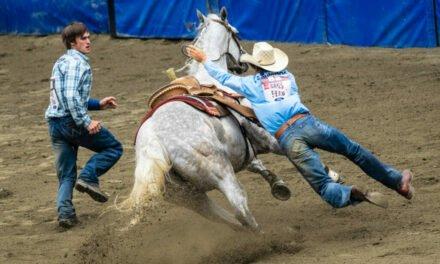 Cowboy ridden hard bites the dust